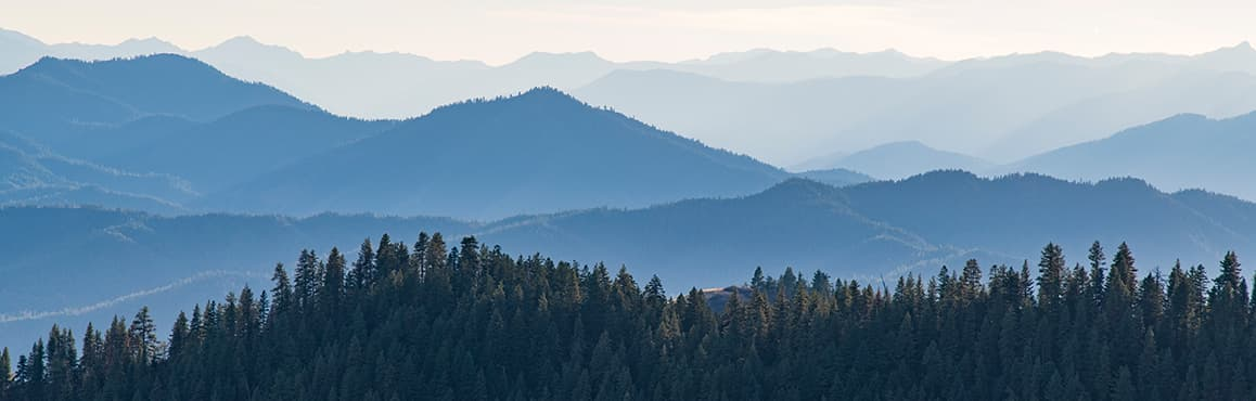 Many mountain ridgelines covered in evergreen trees fade into the distance
